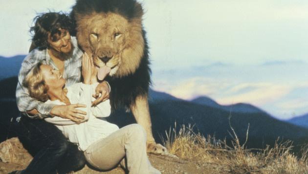 Gemeinsam mit Ehemann Noel Marshall realisierte Tippi Hedren das Filmprojekt. (Bild: Eric Brissaud/Eyevine/picturedesk.com)