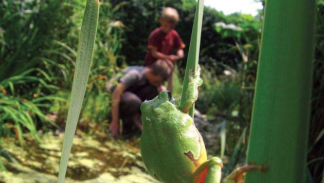 Warum Biodiversität auch für Menschen wichtig ist (Bild: Ute Nüsken)