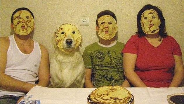 """Diese Haustiere verhalten sich wie """"ihre"""" Menschen (Bild: Reddit.com/The Koki)"""