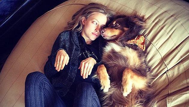 Hier handelt es sich übrigens um Schauspielerin Amanda Seyfried und ihren Hund. (Bild: Instagram/Mingey)