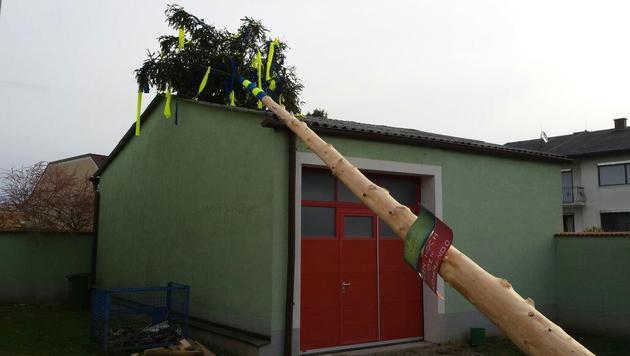 Maibäume umgeschnitten: Acht Täter ausgeforscht (Bild: Einsatzdoku.at)