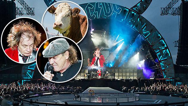 AC/DC schreiben Musikgeschichte in Österreich (Bild: AFP, APA/EPA/DANIEL KARMANN, EXPA Picture)
