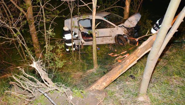Ein Baum wurde bei dem Unfall entwurzelt. (Bild: Einsatzdoku.at)