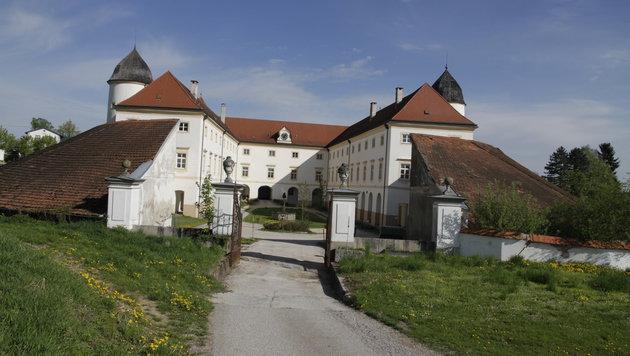 Das Schloss Losensteinleiten kann man für eine Million Euro haben. (Bild: Markus Schütz)