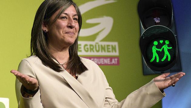 FPÖ-Misstrauensantrag gegen Vassilakou ohne Folgen (Bild: APA/HANS PUNZ, thinkstockphotos.de, krone.at-Grafik)