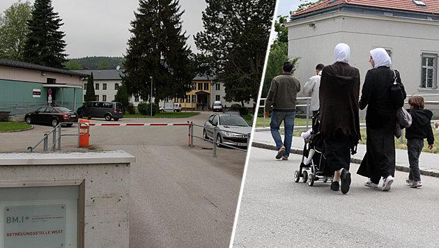 Im Asyl-Erstaufnahmezentrum Thalham bei St. Georgen im Attergau wurde eine Zeltstadt errichtet. (Bild: Markus Schütz, Andi Schiel)