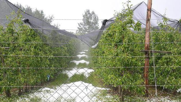 Schwere Schäden durch Hagelunwetter in der Stmk (Bild: APA/FF LUDERSDORF)