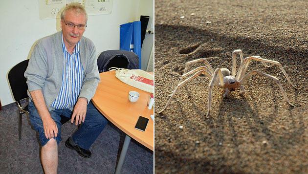 Richard Müllner ist überzeugt, dass er von einer Sahara-Spinne gebissen wurde. (Bild: Bezirksblätter NÖ/Zeilinger, TU Berlin)