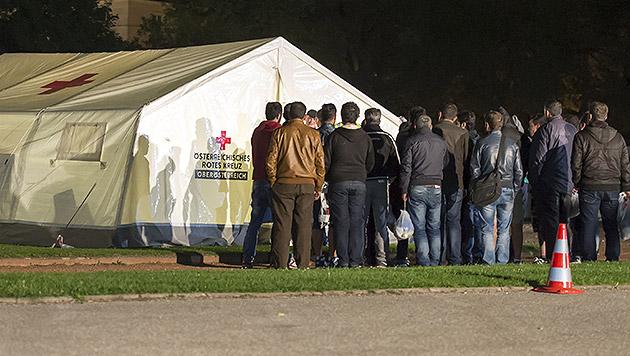 Asylwerber sollen in Österreich arbeiten dürfen (Bild: APA/FOTOKERSCHI.AT/WERNER KERSCHBAUMMAYR)
