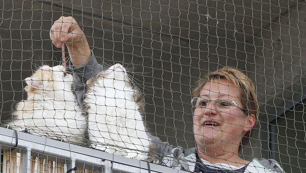 Die Bewohner, egal ob mit oder ohne Haustier, sind begeistert. (Bild: Zwefo)