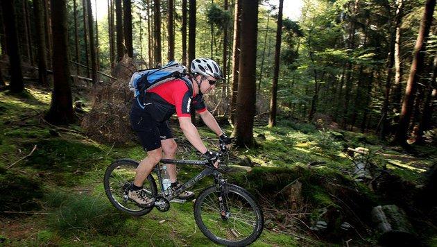 Schlagabtausch um Radfahrverbot im Wald (Bild: dpa/Oliver Berg (Symbolbild))
