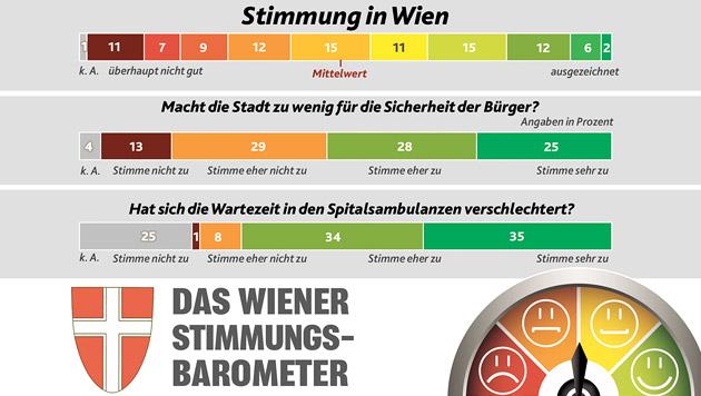 """Umfrage zeigt: Wunsch nach mehr Sicherheit in Wien (Bild: """"Krone"""")"""