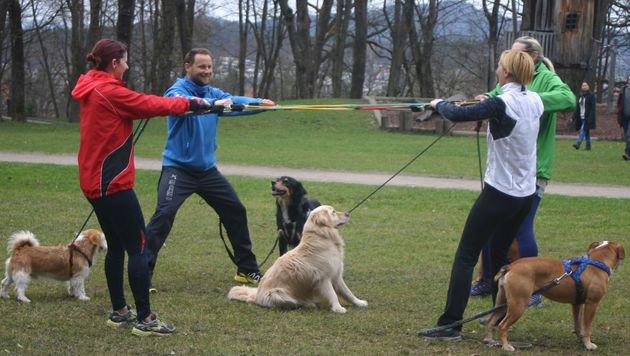 """Neue """"Fit mit Hund""""-Kurse in Kärnten angeboten (Bild: Claudia Fischer)"""
