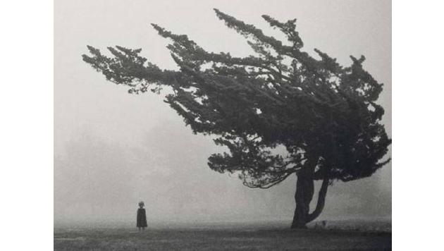 Kinder können einem richtig Angst machen - wie dieses Mädchen neben einem Baum.