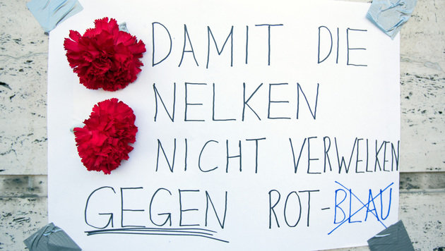 Rot-Blau will im Burgenland alles besser machen (Bild: APA/GEORG HOCHMUTH)