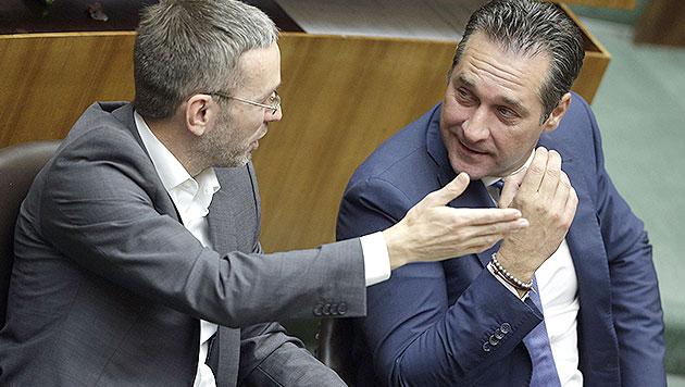 """""""Bundes-SPÖ mangelt es an demokratischer Reife"""" (Bild: APA/GEORG HOCHMUTH)"""