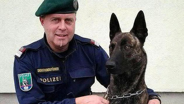 """Diensthundeführer Horst Klug, der den Tatverdächtigen verhaftet hat, mit Diensthund """"Zorro"""" (Bild: APA/LPD STEIERMARK)"""