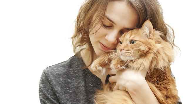 Sechstel von 300 Katzenkotproben mit Darmparasiten (Bild: thinkstockphotos.de)