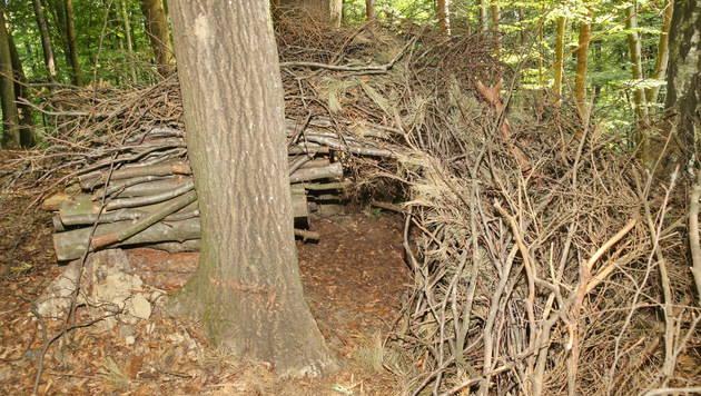 Hier hielt sich Josef R. versteckt. (Bild: Sepp Pail)