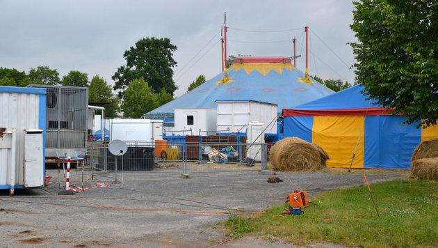 Der Spaziergänger wurde rund 100 Meter vom Zirkus entfernt tot aufgefunden. (Bild: APA/dpa/Rene Priebe)