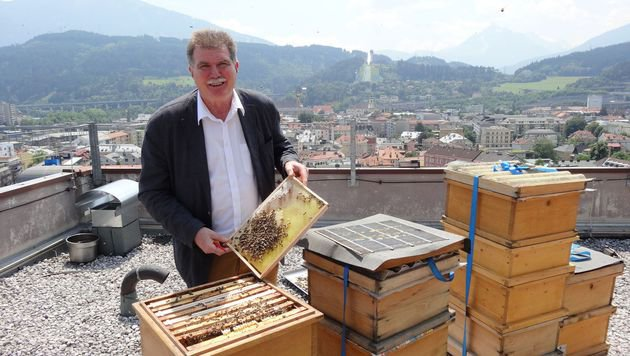 Den Bergisel im Blick, horten Hetzenauers Bienen auf dem Dach vom Hotel Hilton ihren Honig. (Bild: Claudia Thurner)