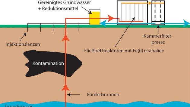 """Forscher """"impfen"""" verseuchten Boden (Bild: Kärntner Krone)"""
