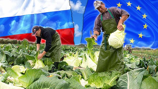 Russland-Sanktionen: 7000 Jobs in Österreich weg (Bild: APA/dpa, thinkstockphotos.de)