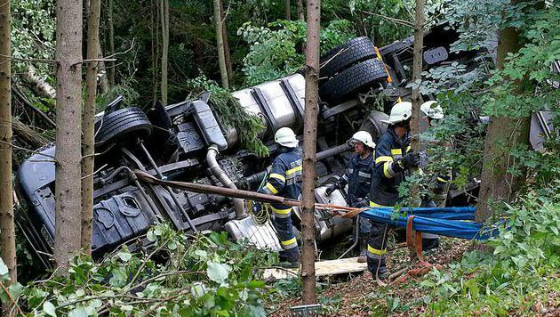 Lastwagen mit 160 Schweinen an Bord verunglückt (Bild: APA/LFV FRANZ FINK)