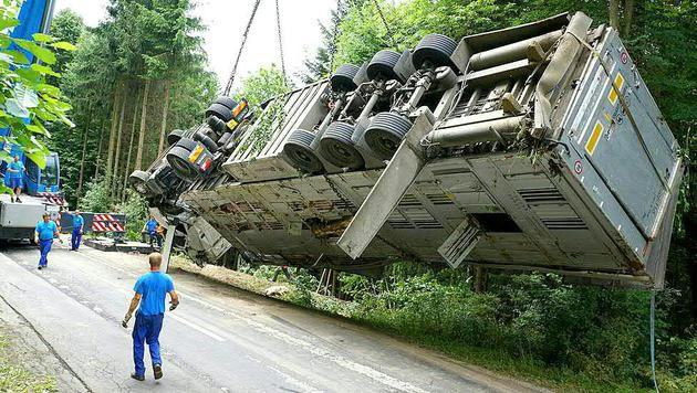 Die meisten Tiere hatten keine Überlebenschance, als der Laster über die Böschung stürzte. (Bild: APA/LFV FRANZ FINK)