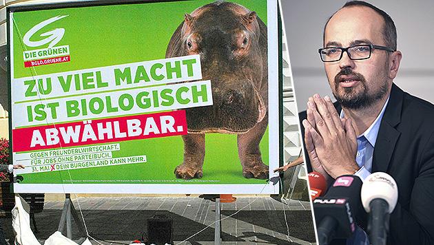 Der grüne EU-Abgeordnete Michel Reimon kritisiert unter anderem die Plakatwerbung seiner Partei. (Bild: APA/DIE GRÜNEN BURGENLAND, APA/VIOLA JAGL)