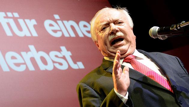 Wiener SPÖ wirft Freiheitlichen Fehdehandschuh hin (Bild: APA/ROLAND SCHLAGER)