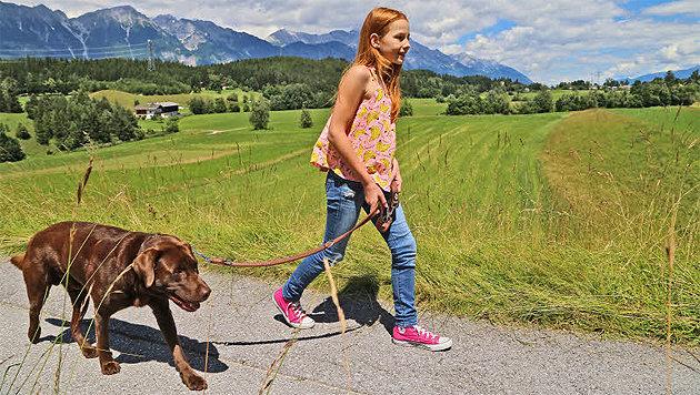 Mit Hunden wird jeder Spaziergang zum Abenteuer (Bild: Christoph Birbaumer)