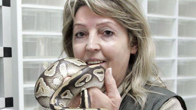 """Reptilien-Expertin Helga Happ: """"Es ist bereits unüberschaubar."""" (Bild: Klaus Kreuzer)"""