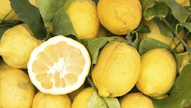 Kampanien: Wo die Zitronen wachsen (Bild: thinkstockphotos.de)