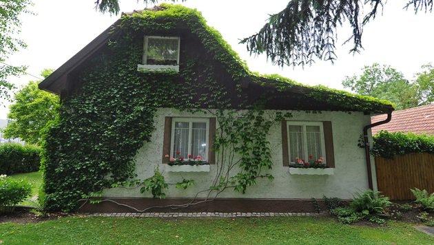 In diesem Haus in Wien-Donaustadt schlug der Täter zu. (Bild: BPD Wien)