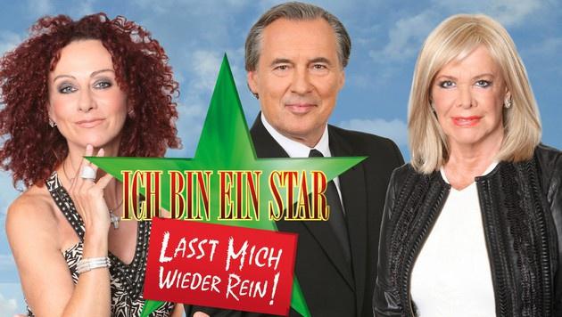 """Mausi Lugner trat gegen Peter Bond und """"Dschungelkönigin"""" Ingrid van Bergen an. (Bild: RTL)"""