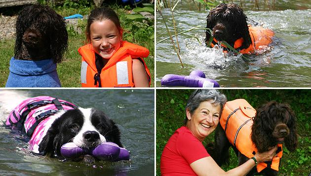 Wassertherapie-Begleithunde sind Helfer im Nass (Bild: Claudia Fischer)