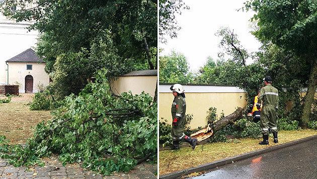 Im burgenländischen Großpetersdorf wütete ein orkanartiger Sturm. (Bild: APA/FF GROSSPETERSDORF)