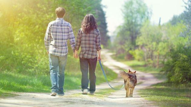 "Neue App ""Tindog"" verkuppelt Single-Hundehalter (Bild: thinkstockphotos.de)"
