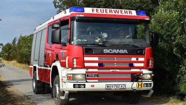 Feuerwehrmänner im heldenhaften Kampf gegen Hitze (Bild: Patrick Huber)