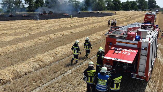 NÖ: Traktor stand auf Feld in Vollbrand (Bild: Lukas Derkits/Pressestelle BFK Mödling)