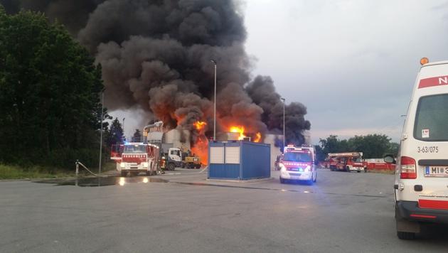 Großeinsatz in NÖ: Lagerhalle brannte lichterloh (Bild: Leserreporter Maximilian Danner)