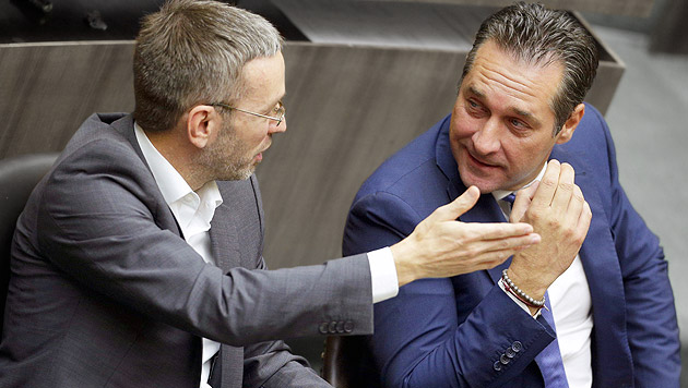 Rätsel um Kampagne gegen FPÖ (Bild: APA/Georg Hochmuth)