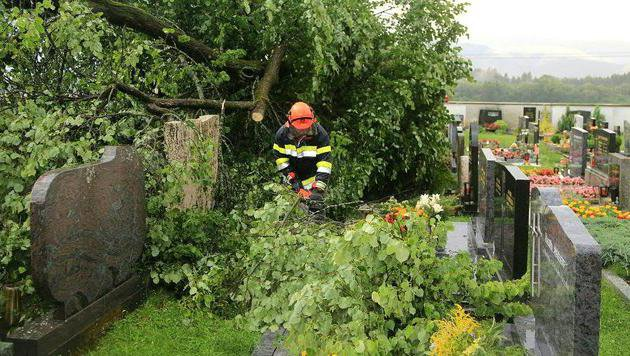Umgestürzte Bäume verursachten am Friedhof von Großlobming Schäden an mehreren Gräbern. (Bild: APA/FEUERWEHR APFELBERG/THOMAS ZEILER)