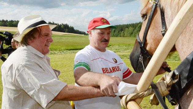 Auch der richtige Umgang mit weißrussischen Pferden muss gelernt werden. (Bild: APA/EPA/ANDREI STASEVICH POOL)