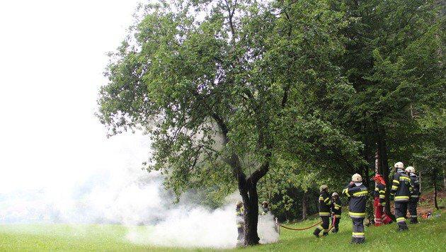 In Wies wurde ein Baum von einem Blitz getroffen und begann zu brennen. (Bild: FF Wies)