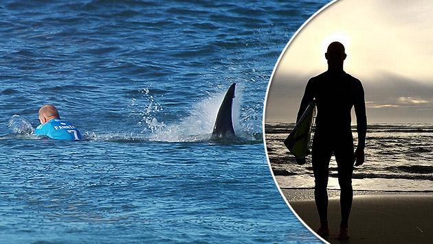 Kurz nach Hai-Attacke: Surf-Star wieder im Einsatz (Bild: AP/WORLDSURFLEAGUE.COM, instagram.com)