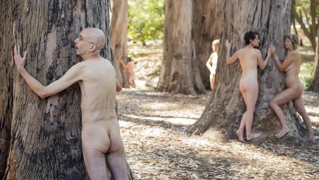 Nackte, die mit Eukalyptusbäumen kuscheln (Bild: REUTERS/Noah Berger)