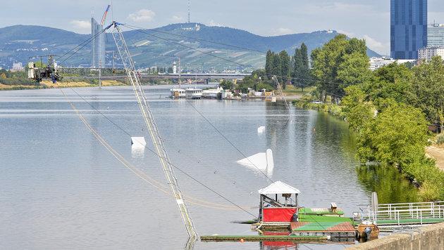 Der Wakeboard-Lift an der Neuen Donau (Bild: APA/Herbert Neubauer)