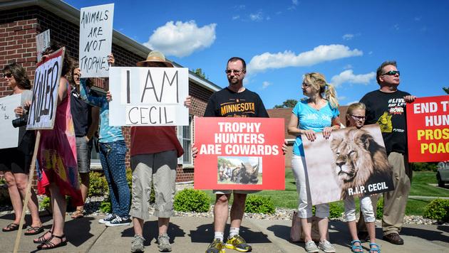 """Nach """"Cecils"""" Tod: Geballte Wut gegen US-Zahnarzt (Bild: AP)"""